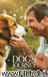 poster del film a dog's journey