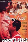 poster del film days of being wild