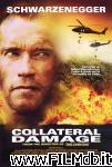 poster del film collateral damage