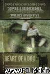 poster del film Heart of a Dog